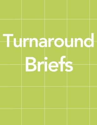 Turnaround Briefs thumb